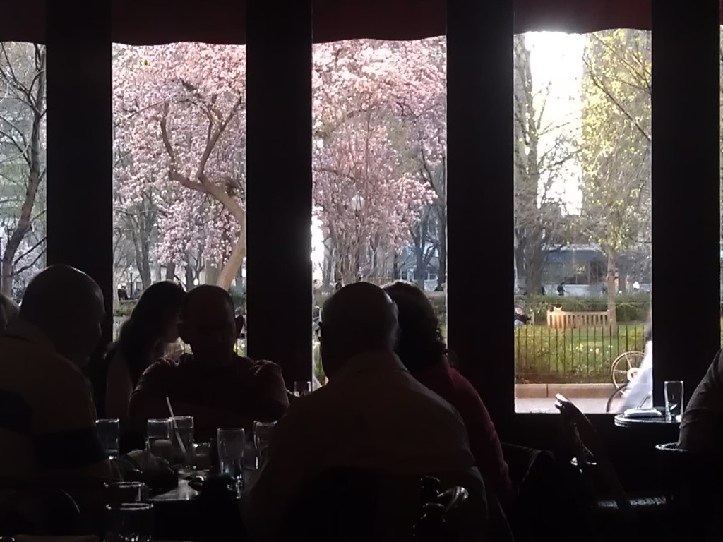 View from our inside table at the Parc Brasserie, Rittenhouse Square, Philadelphia