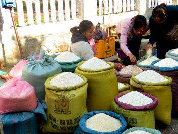 Rice for sale in the Luang Prabang street market