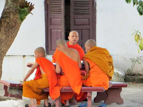 Buddhist monks, Luang Prabang