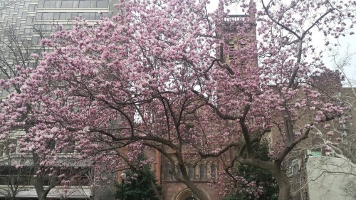 Church of the Holy Trinity, Rittenhouse Square, Philadelphia