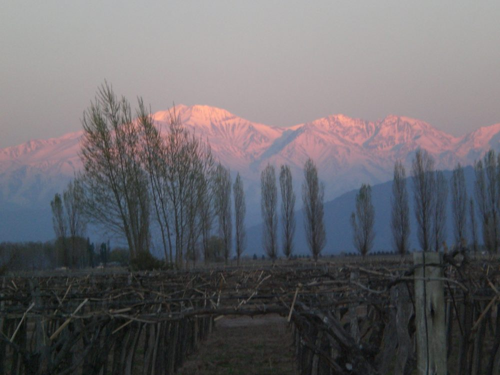 Sunrise on the Andes, Mendoza Argentina, Cavas Wine Lodge
